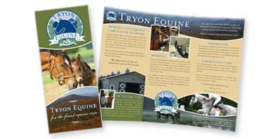 Equine Veterinary Hospital Brochure