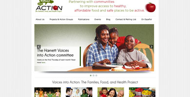 Voices into Action Website